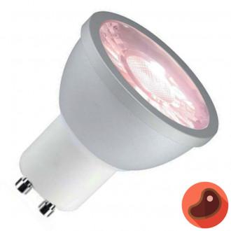 LAMPARA LED GU10 6W LUZ ROSADA MORADA